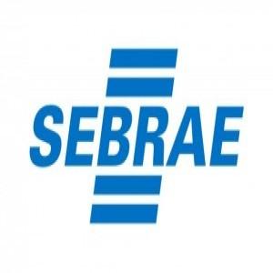 266299 sebrae 300x179 300x300 Curso Gratuito no SEBRAE   Iniciando um Pequeno e Grande Negócio